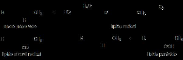 Peroxidación