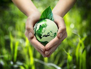Uso Sustentable