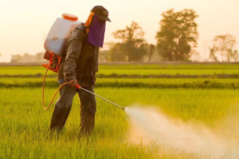 pesticidas contaminación del suelo