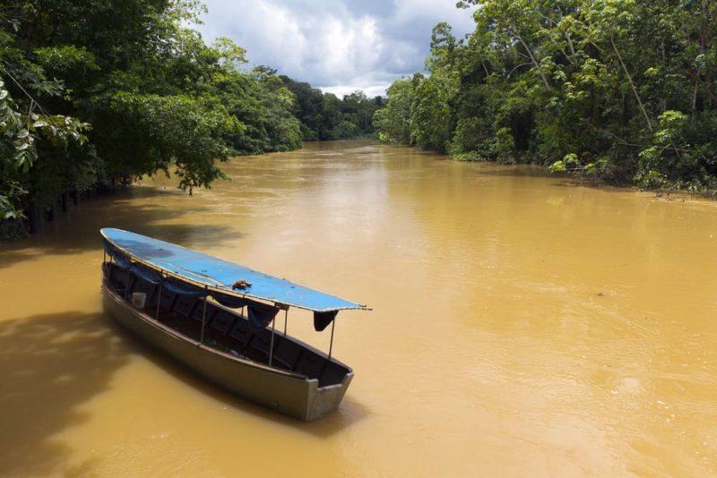 amazonas - rio y selva