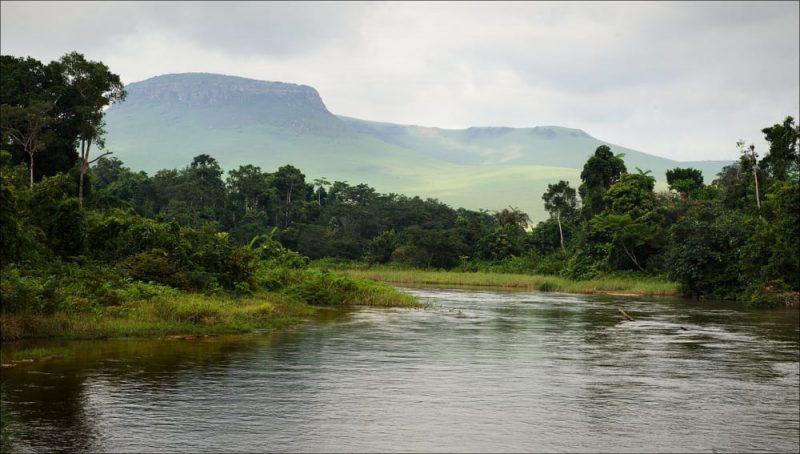 congo - selva y rio