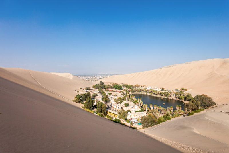 oasis en desierto - bioma