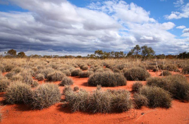 gran desierto de victoria - australia