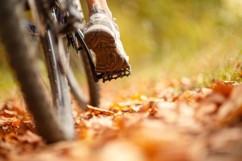 pedaleo en bicicleta - energia mecanica