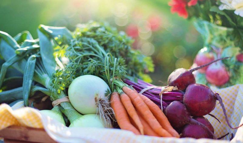 VITAMINAS - verduras hortalizas